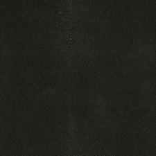 Poppy Seed Texture Plain Decorator Fabric by Fabricut