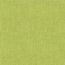 Celery/Light Green Solids Decorator Fabric by Kravet