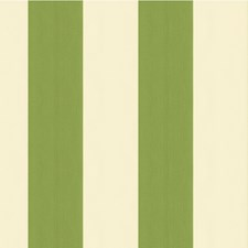 White/Green Stripes Decorator Fabric by Kravet