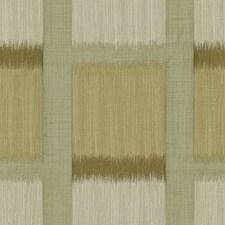 Shiitake Ikat Decorator Fabric by Kravet