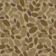 Barley Botanical Decorator Fabric by Kravet