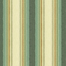 Parakeet Stripes Decorator Fabric by Kravet