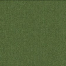 Green/Olive Green Solids Decorator Fabric by Kravet
