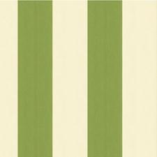 White/Green Stripes Decorator Fabric by Kravet