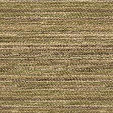 Grass Stripes Decorator Fabric by Kravet
