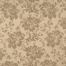 Chinchilla Damask Decorator Fabric by Fabricut