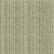Vapor Stripes Decorator Fabric by Kravet