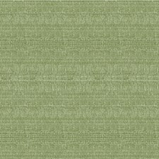 Mint/Green Solids Decorator Fabric by Kravet