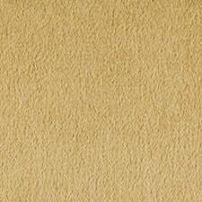Desert Solids Decorator Fabric by Kravet