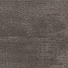 Birch Solids Decorator Fabric by Kravet