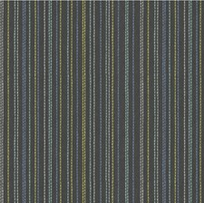 Hypnotic Stripes Decorator Fabric by Kravet