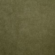 Bay Leaf Decorator Fabric by Clarence House