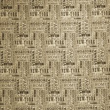 Graphite Novelty Decorator Fabric by Fabricut