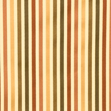 Coral Garden Stripes Decorator Fabric by Fabricut