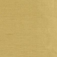 359078 DQ61335 264 Goldenrod by Robert Allen