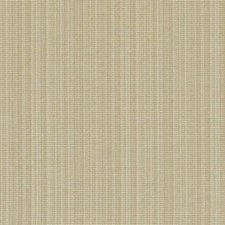 360791 DK61158 281 Sand by Robert Allen