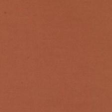 367375 DK61423 451 Papaya by Robert Allen