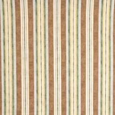 Natural Print Pattern Decorator Fabric by Fabricut