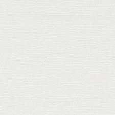 370580 DK61276 86 Oyster by Robert Allen