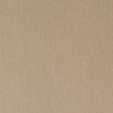 376015 DK61567 560 Pecan by Robert Allen