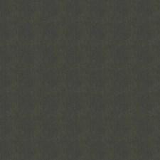 Elephant Solid Decorator Fabric by Stroheim