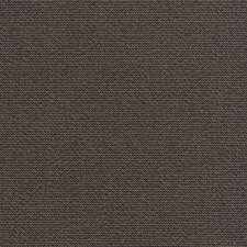 Charcoal Solid Decorator Fabric by Stroheim