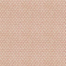 Guava Global Decorator Fabric by Stroheim