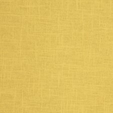Soleil Solid Decorator Fabric by Trend