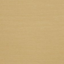 Straw Solid Decorator Fabric by Trend