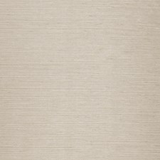 Moonstone Solid Decorator Fabric by Trend