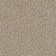 509823 HV16248 160 Mushroom by Robert Allen