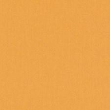511860 DK61731 451 Papaya by Robert Allen