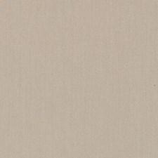 511880 DK61731 564 Bamboo by Robert Allen