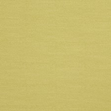 Willow Solid Decorator Fabric by Trend