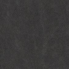 518732 DF16289 79 Charcoal by Robert Allen