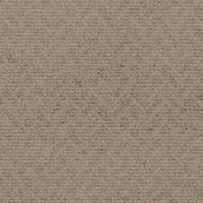 519104 SU16386 116 Fawn by Robert Allen