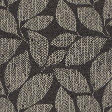 520844 DN16393 79 Charcoal by Robert Allen