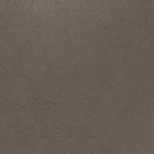Shadow Solid Decorator Fabric by Trend