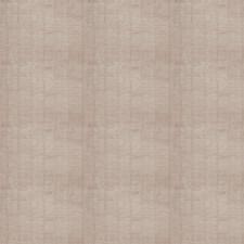 Moonlight Texture Plain Decorator Fabric by Stroheim