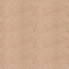 Cameo Contemporary Decorator Fabric by Stroheim