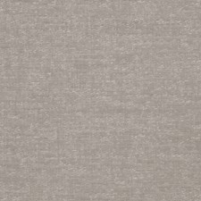 Grey Solid Decorator Fabric by Stroheim