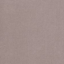 Whisper Solid Decorator Fabric by Stroheim