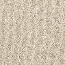 Golden Texture Plain Decorator Fabric by Stroheim