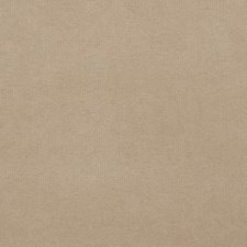Oatmeal Solid Decorator Fabric by Trend