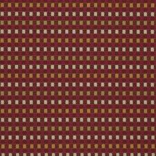 Begonia Check Decorator Fabric by Fabricut