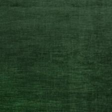Evergreen Solid Decorator Fabric by Fabricut
