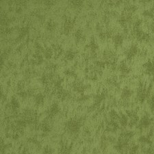 Cactus Texture Plain Decorator Fabric by Trend