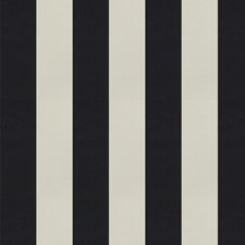 Shadow Stripes Decorator Fabric by Trend