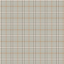 Dew Check Decorator Fabric by Fabricut