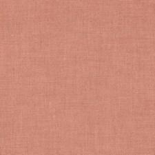 Tea Rose Decorator Fabric by Schumacher